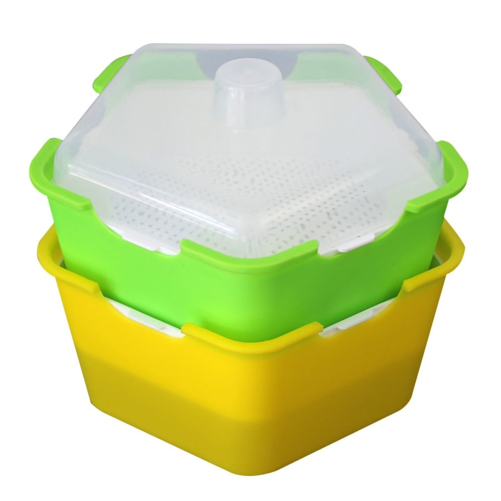 Small Sprouting Box
